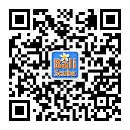 Bali Scuba WeChat QR code