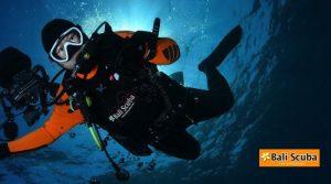Underwater Photography Gili Tepekong